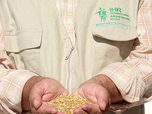 مشروع دعم وتحفيز زراعة القمح (ريف حلب)Home