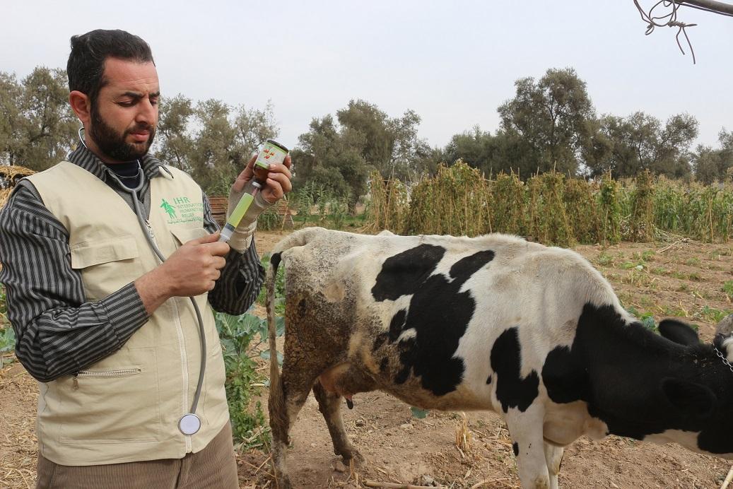 Livelihood and livestock project-06
